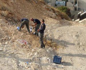 הצבת מלכודות ניטור לזבובי חול. צלם: משה גבריאל