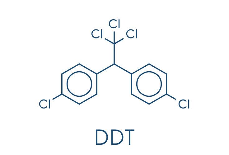 די. די. טי. – DDT