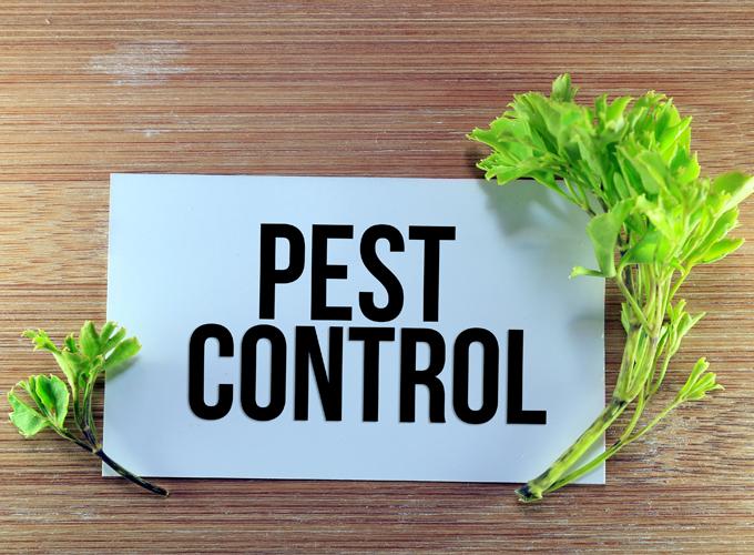 מִמְשַׁק הַדְבָּרָה מְשֻׁלֶּבֶת (הדברה משולבת), מִמְשַׁק מַזִּיקִים מְשֻׁלָּב - integrated pest management, IPM