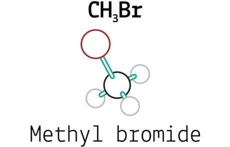 מתיל ברומיד – methyl bromide