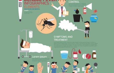 קדחת דנגה (דנגי) – (Dengue) dengue fever