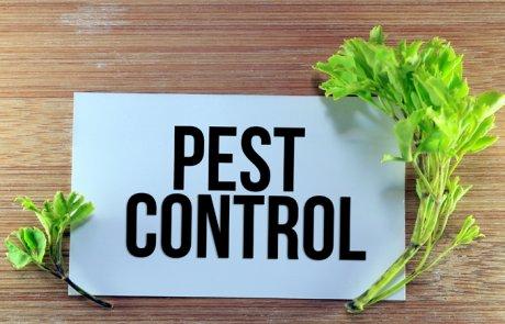 מִמְשַׁק הַדְבָּרָה מְשֻׁלֶּבֶת (הדברה משולבת), מִמְשַׁק מַזִּיקִים מְשֻׁלָּב – integrated pest management, IPM
