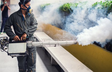 עֲמִידוּת [לקוטלי מזיקים] –  insecticide resistance