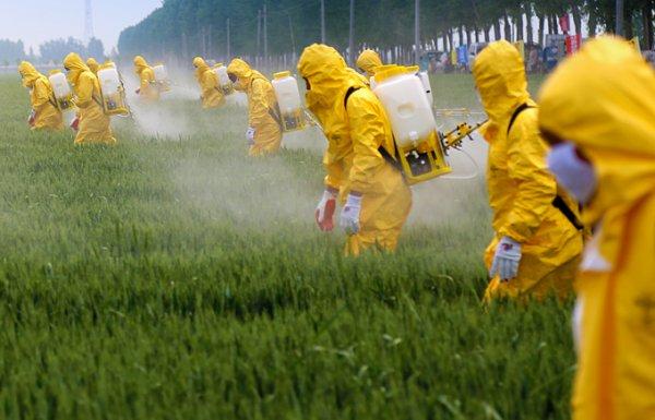 תרסיס – spray
