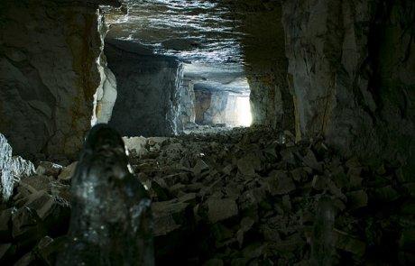 הצד האפל של המזיקים: קרצית המערות ועוריות
